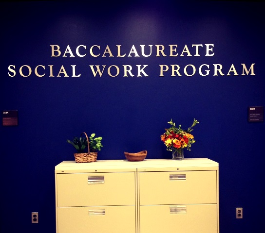adult graduate programs bachelor social work
